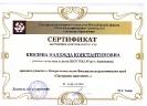 Благодарственное письмо Новосибирск_1